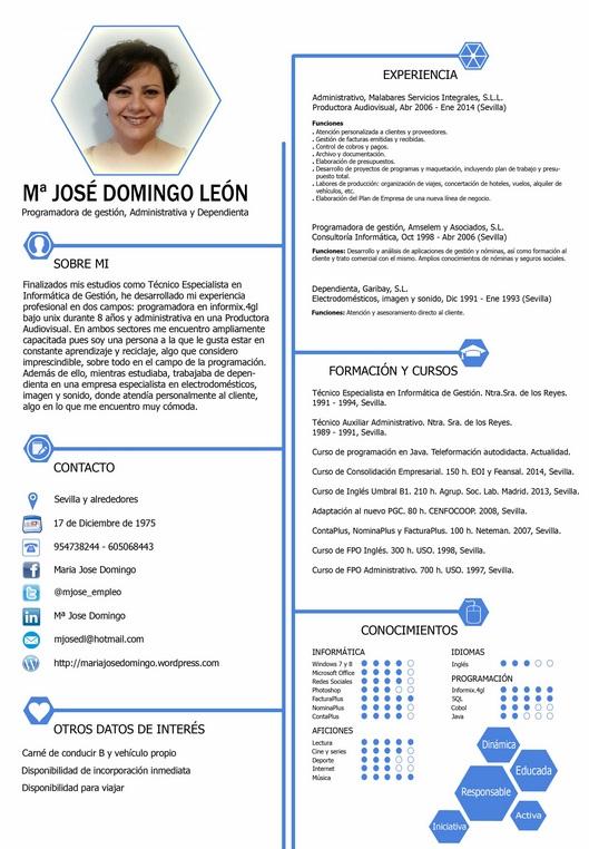 Curriculum Vitae Elementos Y Ejemplo